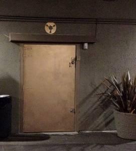 Polymorph Door - Night
